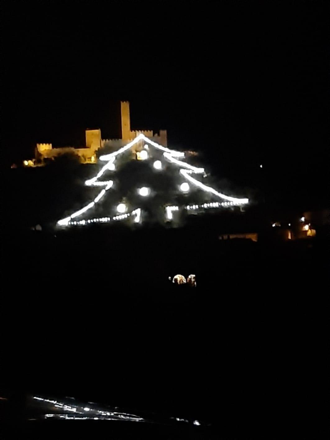 Anche quest'anno l'albero di Montecchio Vesponi è acceso