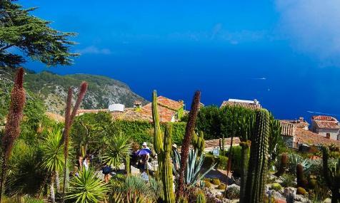 Nizza capitale verde del Mediterraneo